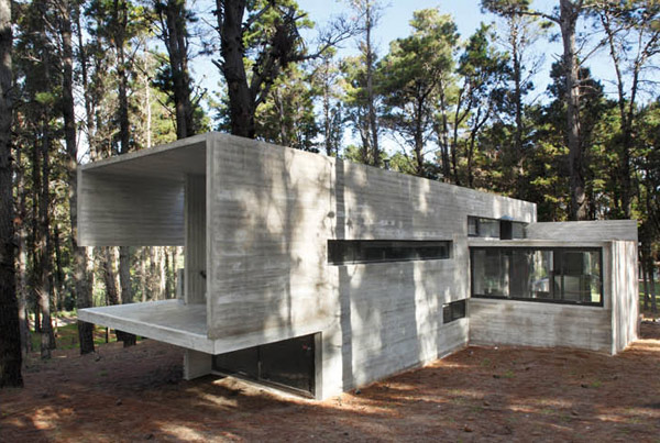 contemporary-concrete-cottage-where-man-nature-collide-1