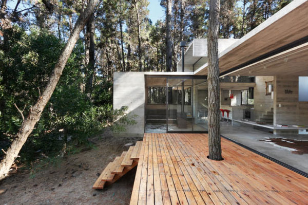 contemporary-concrete-cottage-where-man-nature-collide-7