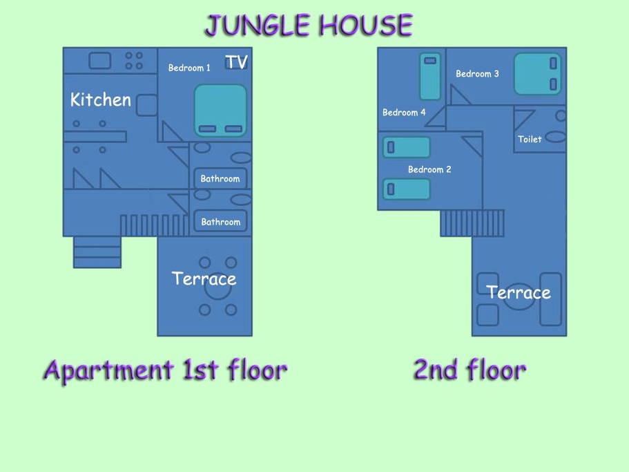 Jungle-house-for-families-13