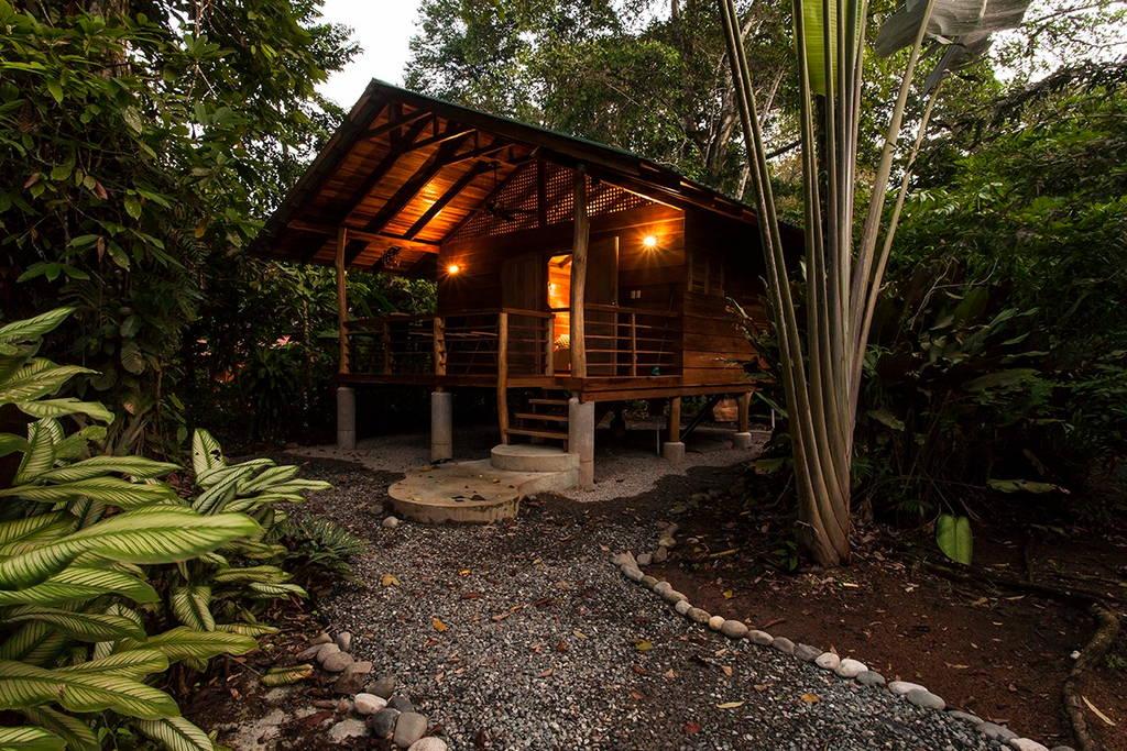 small-wooden-cottage-in-tropical-rainforest-gartdens-08
