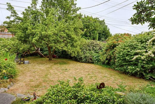 ภายนอกบ้านเขียวขจีไปด้วยสนามหญ้าเล็กๆและไม้ประดับแบบพุ่มริมรั้วบ้าน