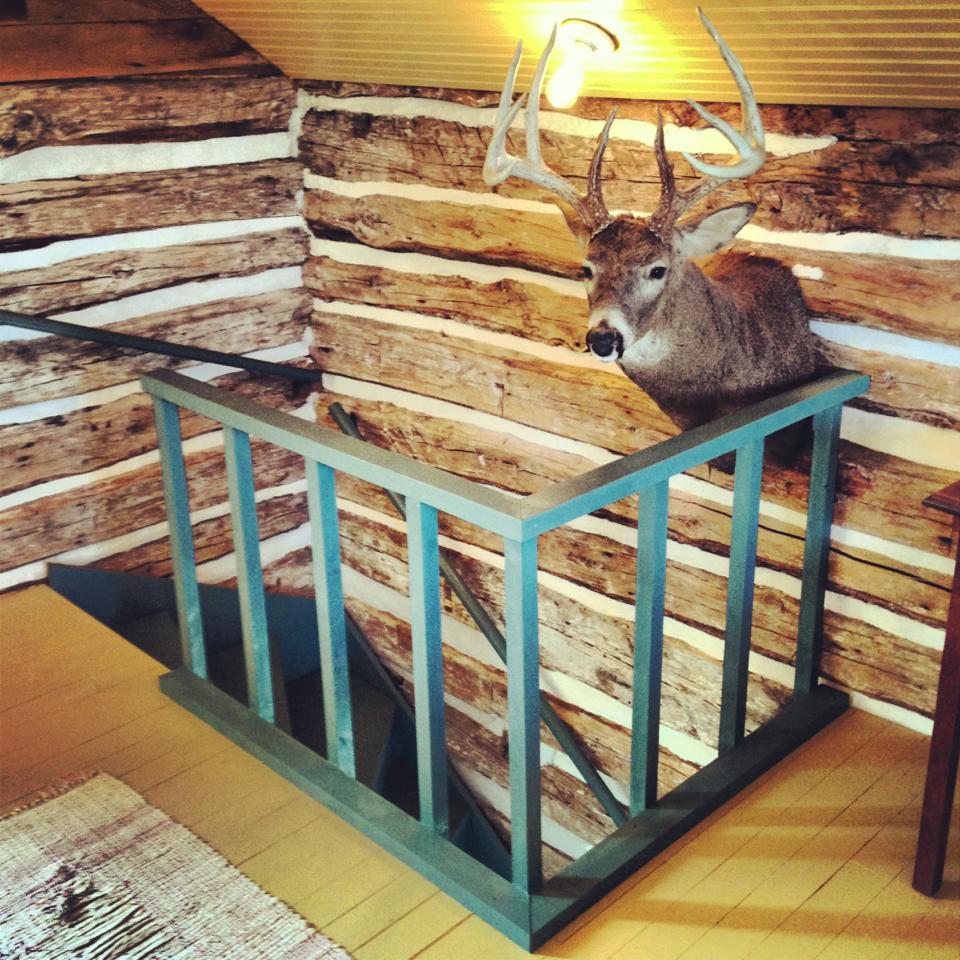 trout-river-log-cabin-bedroom1-via-smallhousebliss